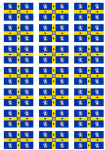 Durham Old Flag Stickers - 21 per sheet